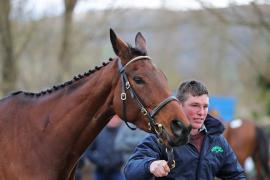Paddy Thurley and My Whirlwind (IRE)