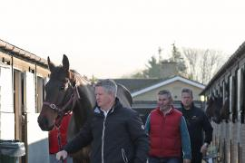 BOLD CONDUCT (IRE)